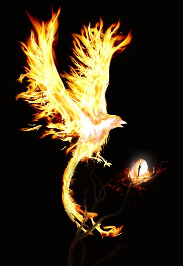 Flight of the Phoenix by shutupandwhiper@deviantart.com