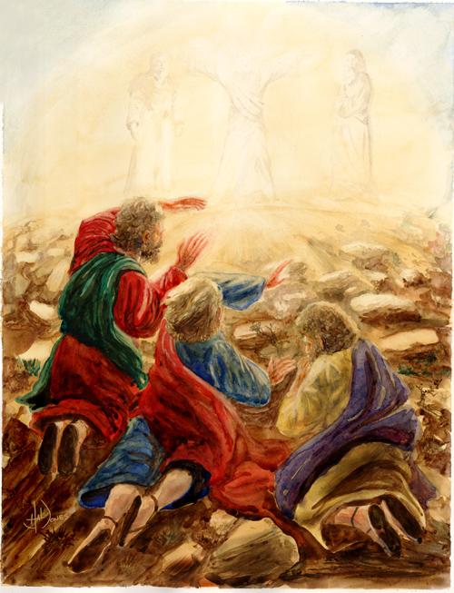 Transfiguration by artjones@deviantart.com