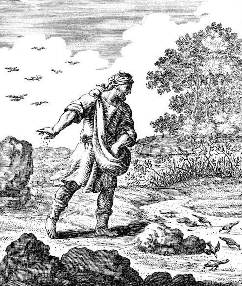 Christoph Weigel, The Sower