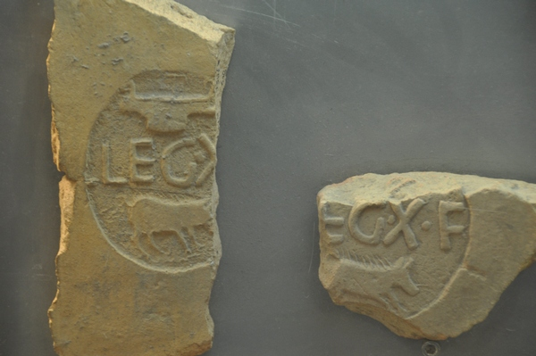 Tiles of Legion X Fretensis showing a Pig as a part of their emblem